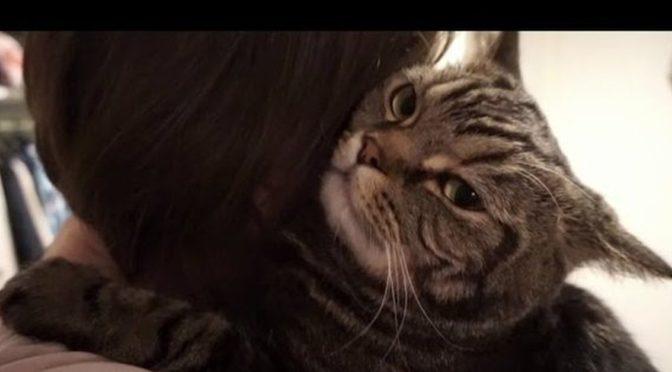Кот обнимал своего хозяина которого не видел 7 лет, мужчина стоял и плакал